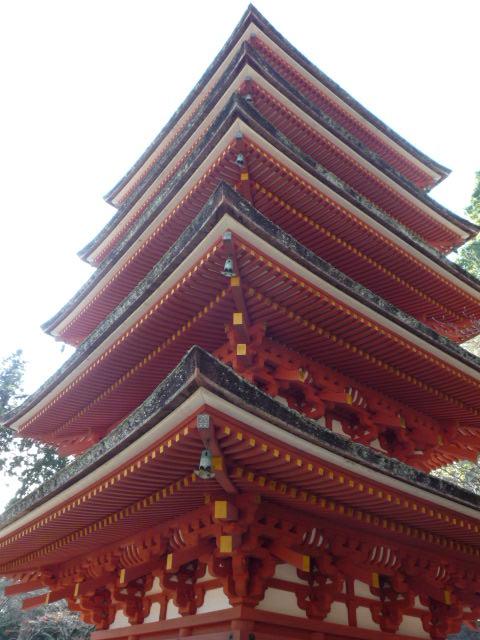 奈良12月5日・6日 026.JPG
